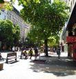 Витошка с безплатен интернет по цялата пешеходна част